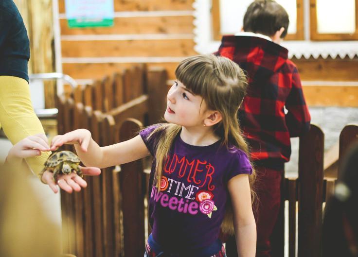 «Живые уроки» - это увлекательные занятия для ребят в контактном зоопарке Лесное посольство г. Уфа