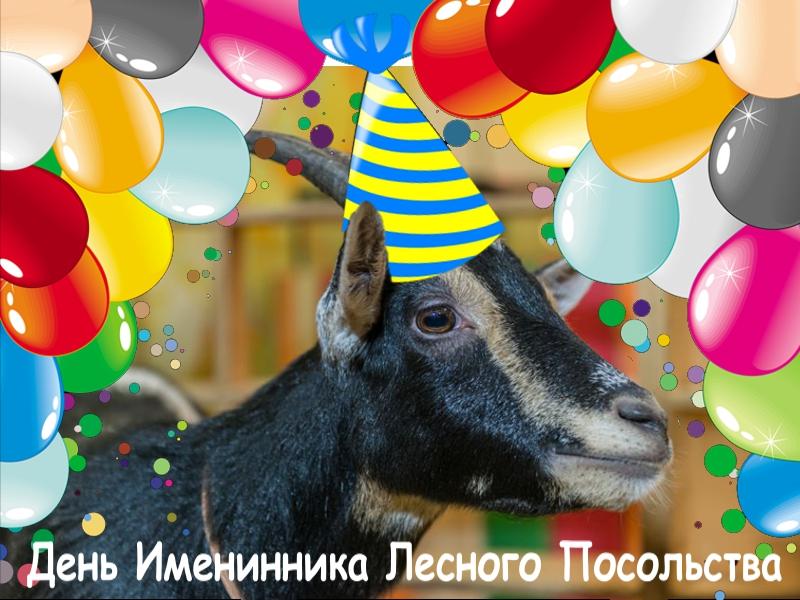 День рождения ребенка, день именинника Лесного Посольства