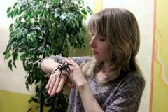 """Выставка """"Нашествие пауков"""""""